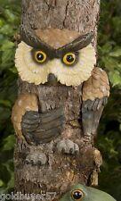 Darling Wise Owl Tree Hugger Garden Art