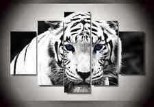 Large Framed Canvas Print White Royal Tiger Blue Eyes Wall Art Home Decor Room