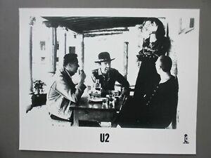 U2 promo photo 8 X 10 glossy black & white sitting at table !