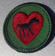 2001-2010 Retired Girl Scout MILLENIUM Badge HORSE FAN Lover