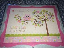 NEW Baby First Year Calendar *Happi Baby Girl*- CR Gibson