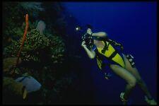 156027 Underwater Photographer On Caribbean Reef A4 Photo Print