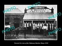 OLD LARGE HISTORIC PHOTO OF TEROWIE SA VIEW OF THE MAHONEY BUTCHER SHOP c1910