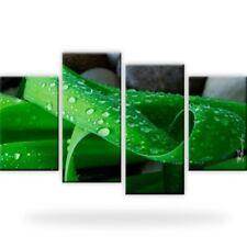 Blatt Natur Wasser Tröpfchen Bild Bilder Wandbild Kunstdruck 4 Teilig