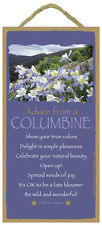 ADVICE FROM A COLUMBINE wood INSPIRATIONAL SIGN wall NOVELTY PLAQUE flower NEW