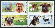 Russia 2019 MNH Toy Dogs Pug Chihuahua 4v Block Domestic Animals Stamps