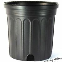 1 Gallon Nursery Pot, (Qty. 100), Black Trade Gallon, 6.5 x 6.5 New