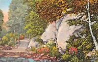 CASCADE PARK OHIO~WOODLAND SCENE 1941 PSMK POSTCARD