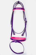 Hanovarian Bridle - Purple / Pink - PVC