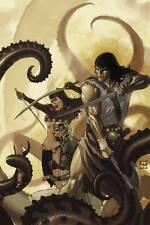 Conan (Dark Horse Comics) #13 Regular Cover NM-