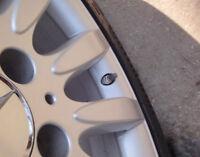 10x grau Ventilkappen Kunststoff mit Dichtung Ventilkäppchen für RDKS, RDV