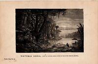 1868 Imprimé ~ Vue De Victoria Regia Lys Sur River Berbice Guyane