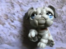 Littlest Pet Shop Gray English Bulldog # 508 Htf Tear