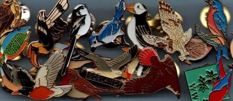Bird Pin Badges by CBL
