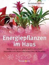 Energiepflanzen im Haus von Eva Katharina Hoffmann (2009, Gebundene Ausgabe)