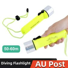 Waterproof 8000LM LED Diving Flashlight Scuba Torch Light Lamp AU Stock ng