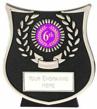 Emblems-Gifts Curve Silver 6th Plaque Trophy With Free Engraving