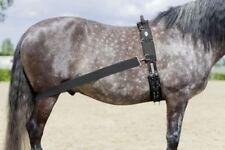 %% USG Trainingssystem zum Longieren Longierhilfe Trainingsband fürs Pferd %%