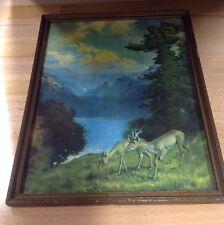 Vintage Framed R. Atkinson Fox Lithograph Prints - Landscape - Nature - Deer