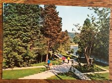 MOORES TREE AVOCA CO WICKLOW IRELAND IRISH POSTCARD