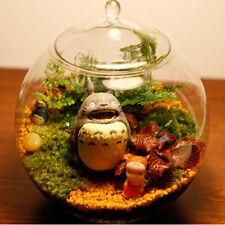 Glass Terrarium Container Bell Jars with Cover (Medium)