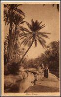 ARABIEN AFRIKA Wüste Oase Oasis Vintage Poscard schöne Ansichtskarte AK ~1910/20