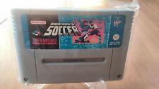 Dino Dinis Soccer Super Nintendo