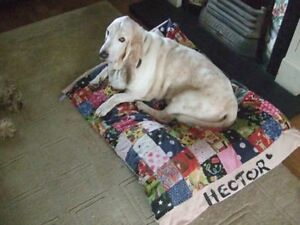 Handmade Personalised Patchwork Dog bed quilt liner ideal for sofa car cage cute