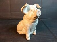 Charmouth Pottery - Sitting Pig Perfect Condition Cute