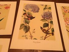 Anthony LaPaglia 5 Print Set New York Graphic Society