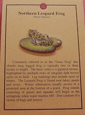 Hat Pin Lapel Pins Northern Leopard Frog