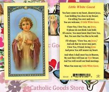 Little White Guest - Laminated Holy Card