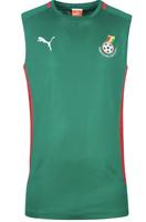 Kamerun PUMA Herren Fußball Trainings Sport Stadion Jacke