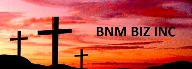 BNM BIZ INC