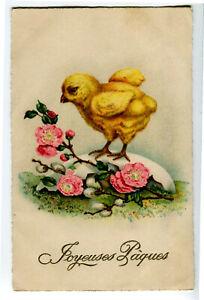 CPSM Fantaisie Joyeuses Pâques Poussin et fleurs