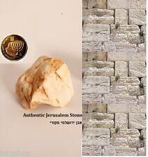 1 Stone Rock Mineral From Jerusalem Israel Holy land +1 Gilded Israeli Coin אבן