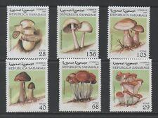 Thematic Stamps Plants - SAHARA 1997 FUNGI 6v mint