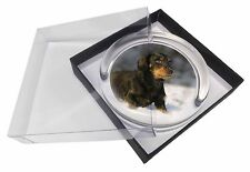 Long-Haired Dachshund Dog Glass Paperweight in Gift Box Christmas Pre, AD-DU35PW