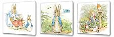 Peter Rabbit  Kids canvas wall art plaque pictures set of three