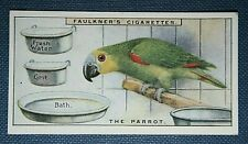 PARROT KEEPING   Cage Bird Requirements    Vintage Colour Card