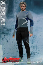 """Quicksilver The Avengers Age of Ultron 1/6 Marvel MMS302 12"""" Figur Hot Toys"""