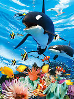 ORCAS KILLER WHALES - 3D ORCA PICTURE 300mm x 400mm (NEW)