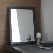 Rectangle Resin Modern Decorative Mirrors