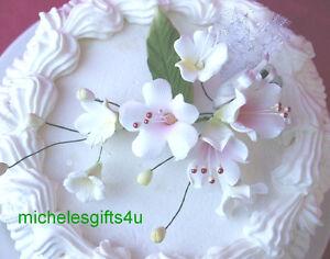 Sugar Gum Paste White Pink Apple Cherry Blossoms & Stephanotis Cake Flowers