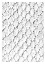 Legion Dragon Hide Art Sleeves White with Gloss Finish, 50 Pack Standard Size