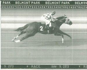 "1973 - SECRETARIAT - Belmont Stakes Finish Line Camera Photo - 10"" x 8"""