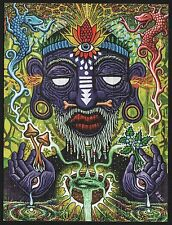 WITCH DOCTOR BY RYAN GARDELL HIGH QUALITY BLOTTER ART