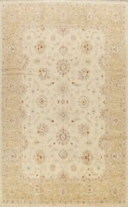 Vegetable Dye Floral Ivory Peshawar Oriental Area Rug Wool Hand-knotted 9x12 New