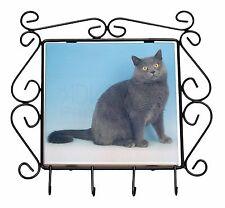 Blue Chartreax Cat Wrought Iron Key Holder Hooks Christmas Gift, AC-34KH