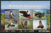 Guyana Stamps 2017 MNH Galapagos Wildlife Penguins Iguanas Finches Birds 6v M/S
